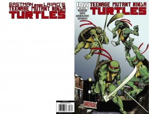 TMNT-33_Cover-RE-Jetpack-01_Turtles-Take-Rochester